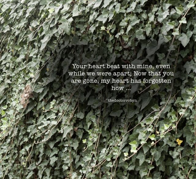 heartbeatgone